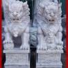 สิงโตปักกิ่ง ขนาด สูง 90 เซนติเมตร ( 1 คู่ )