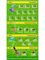 วิธีการเล่นเครื่องออกกำลังกาย-4