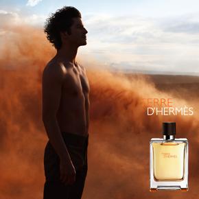 Terre d'Hermes Hermes for men