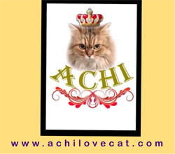 www.achilovecat.com