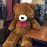 หมีอ้วนกลม holypoly ขนาด 2 M