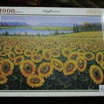 จิ๊กซอว์ 1000 ชิ้น sunflower