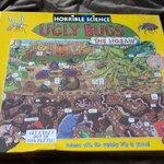 จิ๊กซอว์ 300 ชิ้น Ugly Bugs