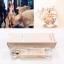 Elie Saab Le Parfum EDP for women ขนาด 10ml แบบสเปรย์
