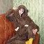 [พร้อมส่ง] ชุดนอนเสื้อขนสัตว์มีฮูดหมี+กางเกง มีสีน้ำตาล/ครีม thumbnail 9