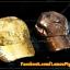 หมวก Cap ปักเกล็ดเลื่อมสีน้ำตาล thumbnail 6