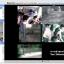 โปรแกรมบันทึกวีดีโอกล้องวงจรปิด Perspective Software Blue Iris 4 Full Version ราคานี้ไม่รวมบริการรีโหมดคอนฟิค thumbnail 4