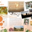Chanalai Orange Soap สบู่กลีเซอรีน ส้มสดผสมน้ำผึ้ง ชนาลัยbyแม่สิน (สินค้าโอท็อปตำบลแม่สิน) thumbnail 6