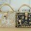 Dolce & gabbana gold diamond acylic luxury handbag thumbnail 2