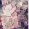 Super White หัวเชื้อปรับผิวขาว