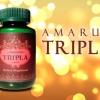 อัมรันต์ - ตรีผลา มหาพิกัดยา ตำรับยาปู่ฤาษีชีวกโกมารภัทร