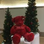 ตุ๊กตาหมี Teddy สีแดง