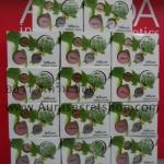 Shinete Gift Set Cream ชิเนเต้ เบบี้เฟซ ของแท้