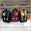 Mis Zapatos Nylon Backpack แบรนด์มาแรงของประเทศญี่ปุ่นที่ขายดีติดอันดับในหมู่วัยรุ่น รุ่นนี้วัสดุเป็น Nylon hi-quality เนื้อนุ่มและหนา ภาพบนตัวกระเป๋าเป็นงานปัก ตัวกระเป๋ากว้างและลึก ด้านหลังและภายในมีช่องแยกเป็นสัดส่วน พร้อมสายสะพายข้าง 1เส้น สามารถเป็นไ thumbnail 16
