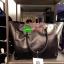 "Best Seller! Givenchy Black Soft Leather Shoulder Handbags (Limited edition!) กระเป๋าถือหรือสะพายพรีเมี่ยมของเเท้จาก ""Givenchy Perfume Counter"" วัสดุหนังนิ่มเรียบสีดำด้านหน้าปั้มโลโก้แบรนด์ GV ภายใน Polyester 100% สีดำสกรีนโลโก้สวยดูดี เปิดปิดด้ thumbnail 2"